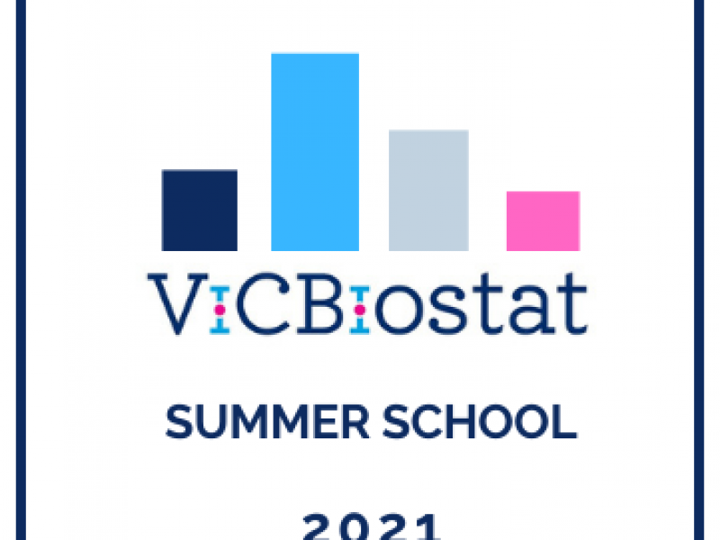ViCBiostat summer school 2021